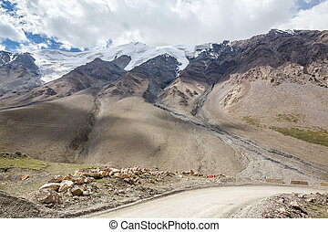 Road turn to Barskoon pass. Kirgizstan - Road turn to...