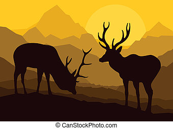 Deer in wild nature forest mountain landscape