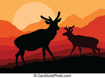 Deer family couple silhouettes in wild mountain nature...