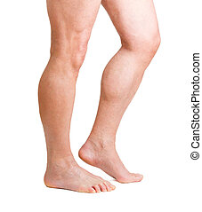Human Legs - male hairy legs isolated on white background