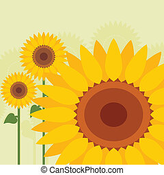 Yellow sunflowers landscape background