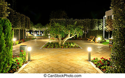 Pomegranate tree with fruits in night illumination at luxury...
