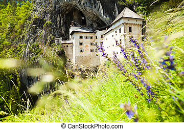 Predjama castle with flowers on foreground - Blue spring...