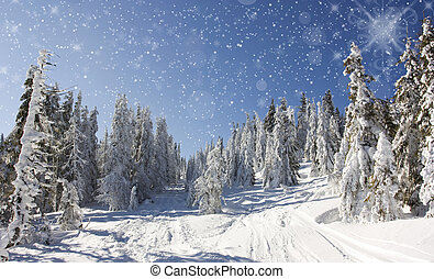 Snow covered road - Christmas background with stars and...