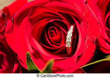 Wedding Rings and Red Flowers - Wedding rings are placed on...