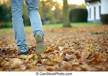 Walking in Autumn - Walking away in boots on brown autumn...