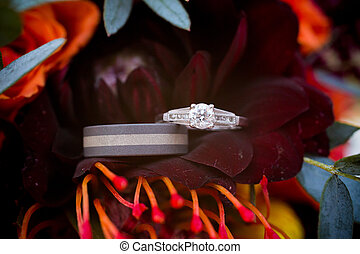 Wedding Rings on Flower - Wedding rings are placed on a dark...