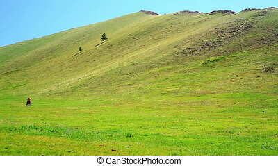 Man riding horse in Mongolian landscape, near Terkhiin...
