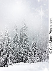 Christmas background with snowy fir trees - Pine trees...