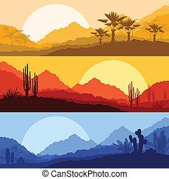 砂漠, 野生, 自然, 風景, サボテン, やし, 木,...