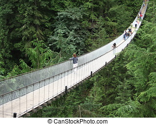 Capilano Bridge - Capilano Suspension Bridge near Vancouver,...