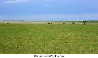 Naadam Festival Horse Race, Central Mongolia - Naadam...