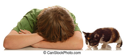 boy being approached by kitten - depressed young boy being...
