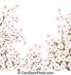 Cherry blossom branch vector background for poster