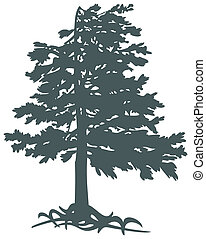 Gimalayskiy cedar - 2-D objects CorelDRAW, vector drawing,...
