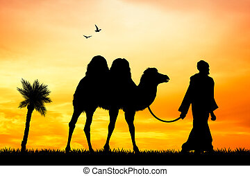 camel in the desert - illustration of camel in the desert