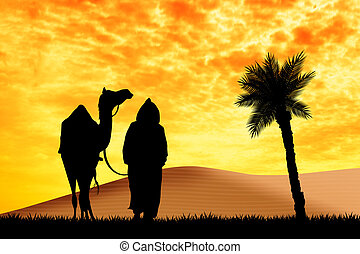 bedouin with camel - illustration of bedouin with camel in...