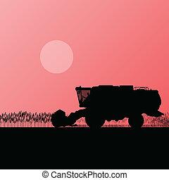 lantbruk, förena, skördearbetare, korn, fält,...