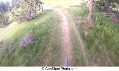 Cyclist going downhill on countryside path in the woods