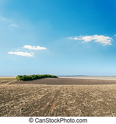 agriculture plowed field and blue sky