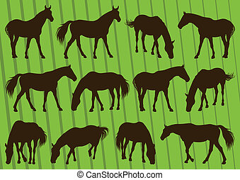 Sport horse silhouettes illustration collection background