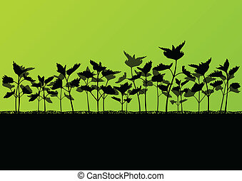 Nettles wild herbs plants detailed silhouettes illustration...