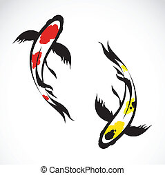 Vector image of an carp koi on white background