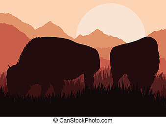 Bison family in wild America nature landscape vector - Bison...