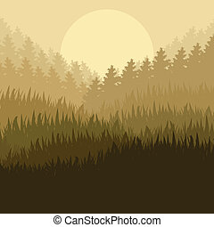 Wild mountain forest nature landscape scene background...
