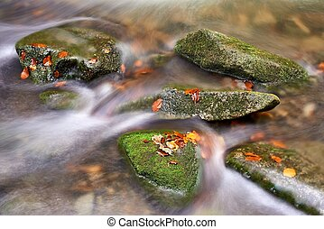 Autumn brook with stones and beech leaves