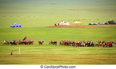 Paddock during Naadam Festival, Mongolia Horses getting...