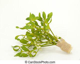 mistletoes - sprig of mistletoe