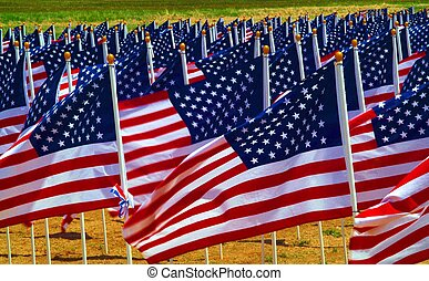 Flags in a field - Flags flying in a field to remember...