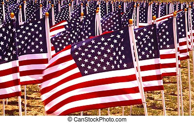Flags in a field. - Flags flying in a field to remember...