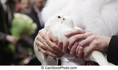 Two Wedding Doves