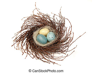 Isolated bird nest - birds nest with eggs isolated on white...