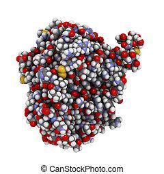 Recombinant DNase I DNA cutting enzyme dornase alfa,...