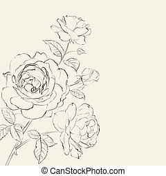 Contour of rose - Contour of rose isolated over beige...