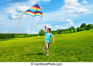 Happy boy run with kite - Little boy in blue shirt running...