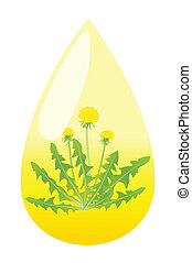 Dandelion flower honey drop vector background concept