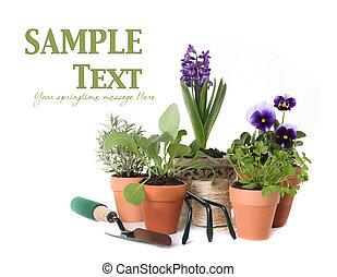 feliz, primavera, tiempo, hierba, jardinería, blanco,...