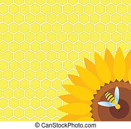 Bee on sunflower and honeycomb vector background