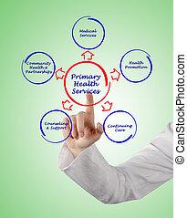 primary health service