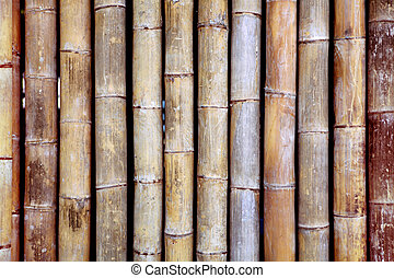 bamboo texture - background from old bamboo sticks, wood...