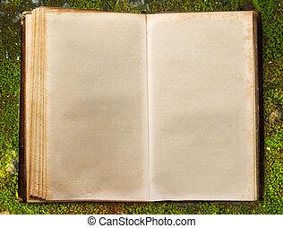 Book on autumn moss ground - Old open book on autumn moss...