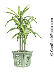 Green Plant and Flower Pot - A green leafy plant in a flower...