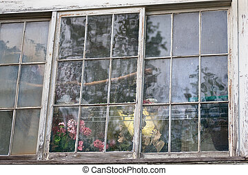 Closeup of large neglected window