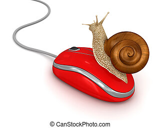 Snail and Computer Mouse