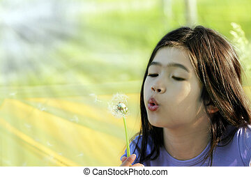 Child blowing dandelion - Little girl blowing on a dandelion