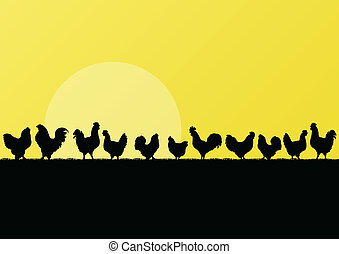 Farm chickens and roosters silhouettes in countryside...